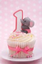 Ideeën voor een gedenkwaardige eerste verjaardag!